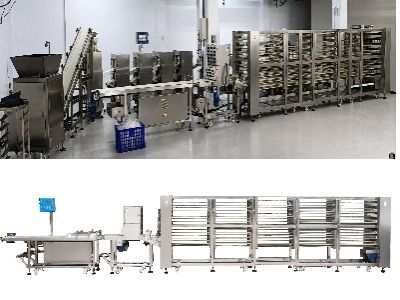 Dough rolling and dividing machine